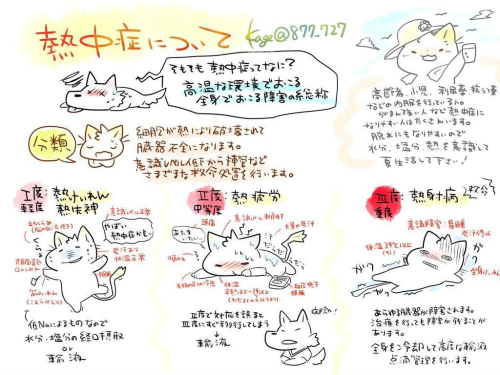 180728_kangoshi_02
